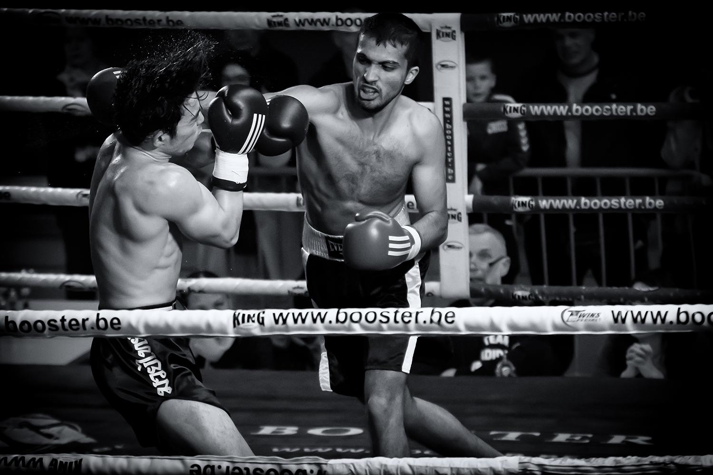 Alle foto's van kickboksgala staan online!